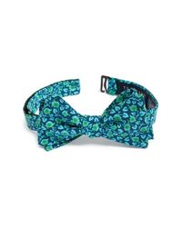 Ted Baker   Blue 'kensington Floral' Silk Bow Tie for Men   Lyst