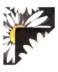 Dolce & Gabbana - Black Printed Silk Scarf - Lyst