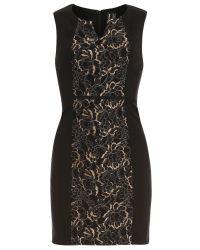 Izabel London - Black Lace Panel Bodycon Dress - Lyst