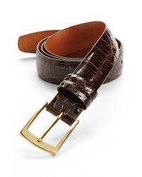 Trafalgar - Brown Alligator Belt for Men - Lyst