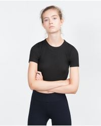 Zara | Black Ribbed Crop Top | Lyst