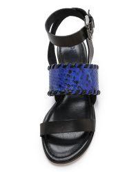 Studio Pollini - Blue Flat Sandals - Cobalt - Lyst