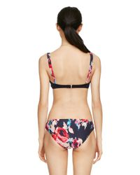 kate spade new york - Multicolor Colombe D'or Bralette - Lyst