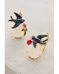 Les Nereides | Black Birdsong Earrings | Lyst