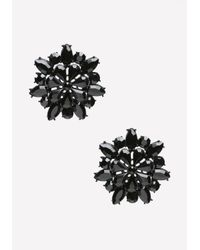 Bebe | Tonal Black Flower Earrings | Lyst