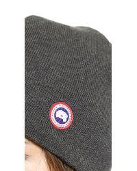 473ea66340d Lyst - Canada Goose Merino Wool Beanie - Navy in Gray