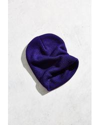 BDG   Purple Ribbed Knit Cuffed Beanie   Lyst