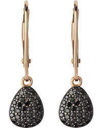 Links of London - Hope 18ct Yellow-gold And Black Diamond Earrings - Lyst