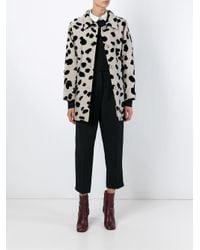 Vivetta - Black Dalmatian Print Coat - Lyst