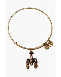 ALEX AND ANI | Metallic Lobster Expandable Wire Bangle | Lyst