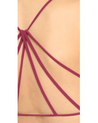 Free People - Red Bella Coachella Seamless Strappy Back Bra - Merlot - Lyst