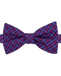 Tommy Hilfiger | Purple Multi-gingham To-tie Bow Tie for Men | Lyst