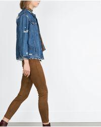 Zara | Brown Faux Suede Leggings | Lyst
