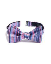 Ted Baker - Blue Stripe Silk Bow Tie for Men - Lyst