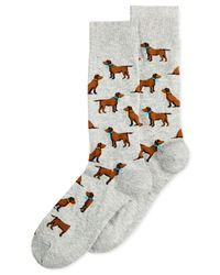 Hot Sox | Gray Men's Lab Dogs Socks for Men | Lyst