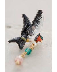 Les Nereides - Black Messenger Bird Mismatched Drops - Lyst