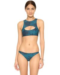 Mikoh Swimwear | Blue Marrakesh Crop Bikini Top | Lyst
