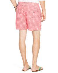 Ralph Lauren - Pink Polo Traveler Dotted Swim Shorts for Men - Lyst