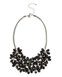 Coast | Black Fenella Floral Necklace | Lyst