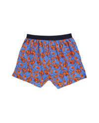 Tommy Hilfiger - Blue Fashion Woven Boxer for Men - Lyst