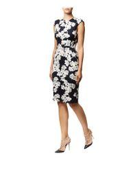 Erdem Black Analena Floral Jersey Dress