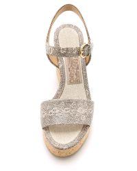 Ferragamo - Gray Madea Wedge Sandals - Roccia - Lyst