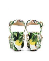 Dolce & Gabbana - Green Bianca Floralprint Canvas Wedge Sandals - Lyst