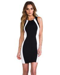 David Lerner - Sleeveless Colorblock Mini Dress in Black - Lyst