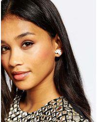 ALDO   Black Amadeusa Through & Through Earrings   Lyst