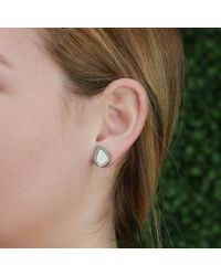 Monique Péan - Natural Fossilized Woolly Mammoth Slice Stud Earrings - Lyst