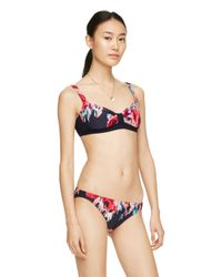 kate spade new york | Multicolor Colombe D'or Bralette | Lyst