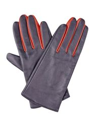 Hobbs | Blue Maggie Glove | Lyst