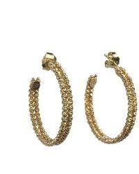 Talia Naomi | Metallic Beluga Double Hooped Earrings Gold | Lyst