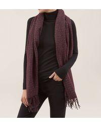 Hobbs | Purple Esther Sparkle Scarf | Lyst