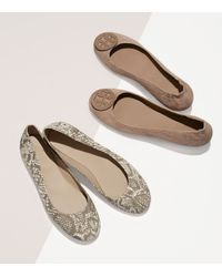 Tory Burch | Brown Logo Minnie Travel Ballet Flat, Embossed Suede | Lyst