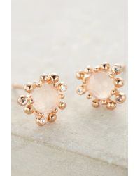 Anthropologie | Metallic Urchin Studs | Lyst