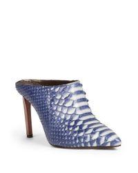 Lanvin - Blue Python Point-toe Mules - Lyst