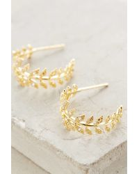 Anthropologie - Metallic Feathered Frond Hoops - Lyst