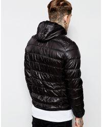 Criminal Damage - Black Padded Jacket With Hood for Men - Lyst