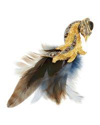 Alexis Bittar - Multicolor Golden & Feather Bird Brooch - Lyst