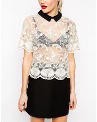 ASOS - Natural Premium Organza Lace T-shirt With Contrast Collar - Lyst