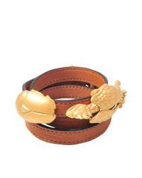 Valentino | Brown Gryphon Beetle Bracelet | Lyst