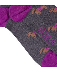 Hobbs - Purple Peggy Dachshund Sock - Lyst