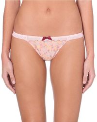 Myla - Pink Mini Lace Briefs - For Women - Lyst