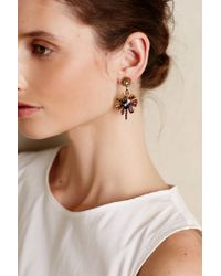Elizabeth Cole - Metallic Centrale Earrings - Lyst