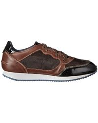 Pikolinos | Brown Lucca 973-6526 | Lyst