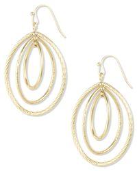 Anne Klein | Metallic Gold-tone Small Oval Drop Earrings | Lyst