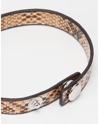ASOS - Brown Leather Bracelet Pack With Snake Print for Men - Lyst