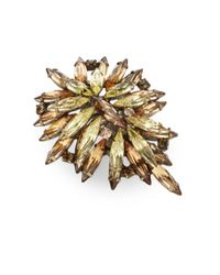 DANNIJO | Brown Bella Clustered Marquis Ring | Lyst