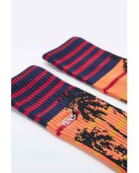 Vans - Sunset Sports Socks In Black for Men - Lyst